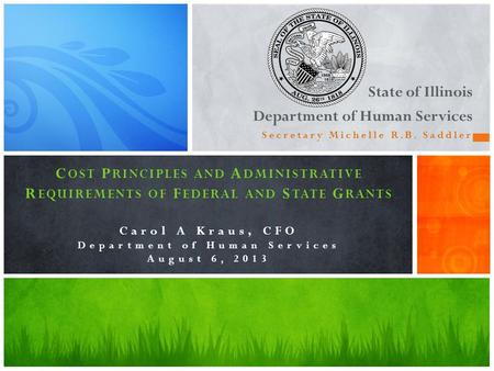 State of Illinois Department of Human Services Secretary Michelle R.B. Saddler C OST P RINCIPLES AND A DMINISTRATIVE R EQUIREMENTS OF F EDERAL AND S TATE.