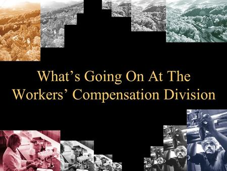 Whats Going On At The Workers Compensation Division.