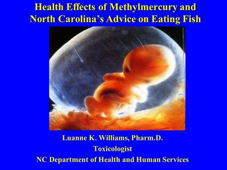 Health Effects of Methylmercury and North Carolinas Advice on Eating Fish Luanne K. Williams, Pharm.D. Toxicologist NC Department of Health and Human Services.