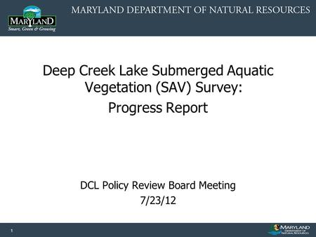 1 Deep Creek Lake Submerged Aquatic Vegetation (SAV) Survey: Progress Report DCL Policy Review Board Meeting 7/23/12.