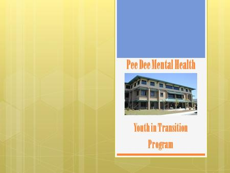 Pee Dee Mental Health Youth in Transition Program.