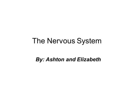 The Nervous System By: Ashton and Elizabeth. The Nervous System By: Ashton and Elizabeth.