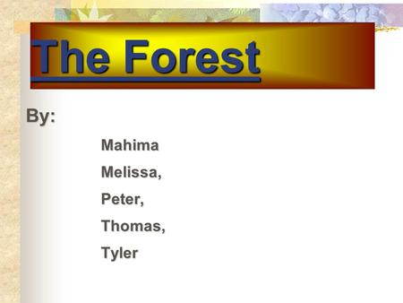 The Forest By: By:MahimaMelissa,Peter,Thomas,Tyler.