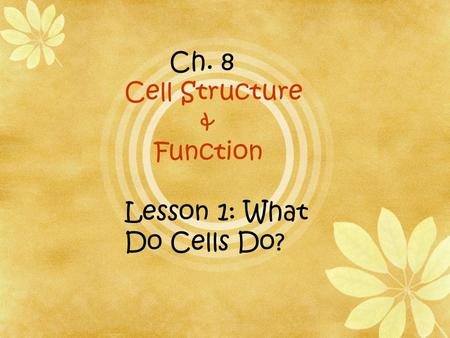 Ch. 8 Cell Structure & Function Lesson 1: What Do Cells Do?