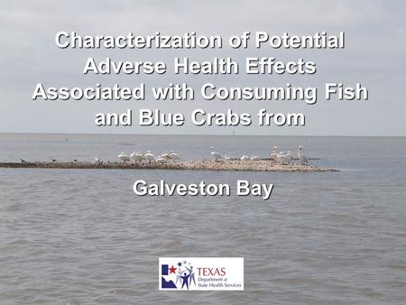 Characterization of Potential Adverse Health Effects Associated with Consuming Fish and Blue Crabs from Galveston Bay.