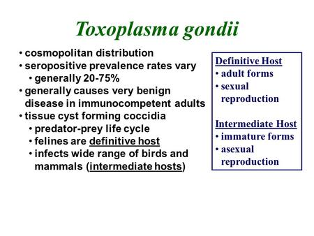 Toxoplasma gondii cosmopolitan distribution seropositive prevalence rates vary generally 20-75% generally causes very benign disease in immunocompetent.