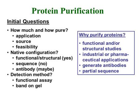 Protein Purification Initial Questions How much and how pure? application source feasibility Native configuration? functional/structural (yes) sequence.