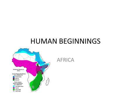 HUMAN BEGINNINGS AFRICA. Chapter 1 – section 1 Prehistory – before the written word (5500 years ago) First human like creatures – 4.4 million years ago.