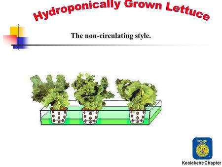 Kealakehe Chapter The non-circulating style. Hydroponics is the science of growing plants in water without soil. Kealakehe Chapter.