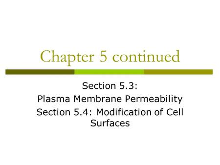 Chapter 5 continued Section 5.3: Plasma Membrane Permeability Section 5.4: Modification of Cell Surfaces.