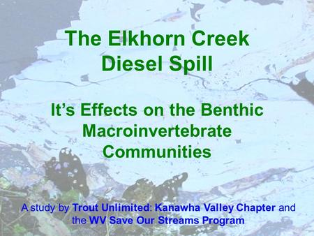 The Elkhorn Creek Diesel Spill Its Effects on the Benthic Macroinvertebrate Communities A study by Trout Unlimited: Kanawha Valley Chapter and the WV Save.