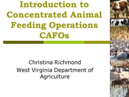 Introduction to Concentrated Animal Feeding Operations CAFOs Christina Richmond West Virginia Department of Agriculture.
