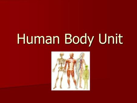 Human Body Unit. Science Benchmarks Describe the structures of the human body and how they work together to sustain life Describe the structures of the.