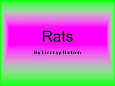 Rats By Lindsey Dietzen. Habitat Rats live in urban and rural parts of the world. Rats sometimes live with humans in cages.