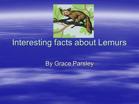 Interesting facts about Lemurs By Grace Parsley. Lemurs habitat Lemurs live in the forest. Lemurs live in the forest. They mostly live on the island of.