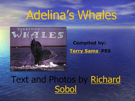 Adelinas Whales Text and Photos by Richard SobolRichard Sobol Compiled by: Terry Sams PESTerry Sams.