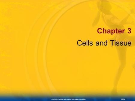 Slide 1 Copyright © 2005. Mosby Inc. All Rights Reserved. Chapter 3 Cells and Tissue.
