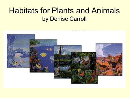 Habitats for Plants and Animals by Denise Carroll.