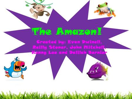 The Amazon! Created by: Evan Dwinell, Reilly Stoner, John Mitchell, Kenny Lee and Dalilah Bernier.