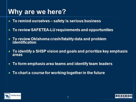 Oklahoma Strategic Highway Safety Plan – Meeting Objectives presented to SHSP Leadership Group SHSP Working Group presented by Dawn Sullivan, Oklahoma.