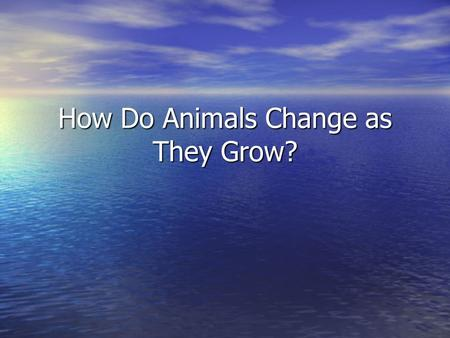 How Do Animals Change as They Grow? The learner will: Recognize that as an organism grows, its appearance may change. Recognize that as an organism grows,