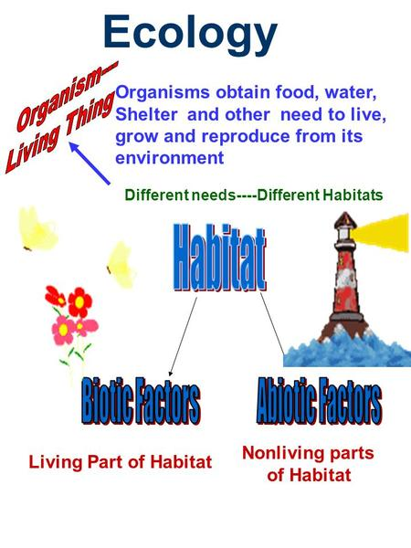 Ecology Organisms obtain food, water, Shelter and other need to live, grow and reproduce from its environment Different needs----Different Habitats Living.