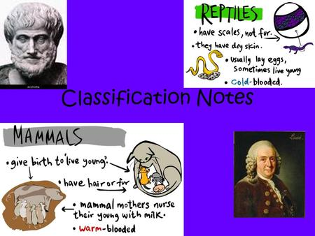 Classification Notes. Taxonomy: the science of classification Why do we need a system of classification? –Brings order –Logical means of naming organisms.