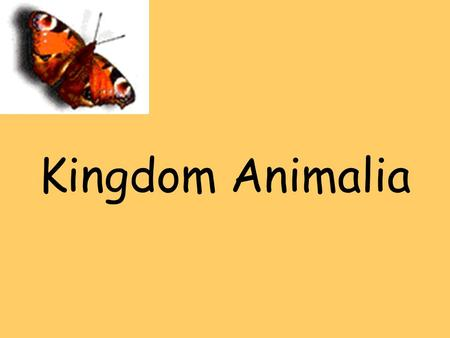Kingdom Animalia. Bellringer 3/22/11Copy questions and answer on page 29 1. Which of these organisms do you think are animals? 2. On what characteristics.