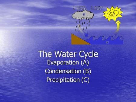 The Water Cycle Evaporation (A) Condensation (B) Precipitation (C)