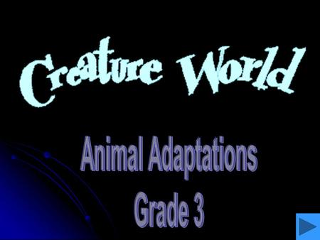 Animal Adaptations Grade 3.