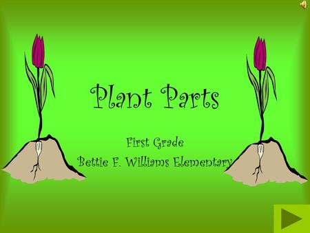 Plant Parts First Grade Bettie F. Williams Elementary.