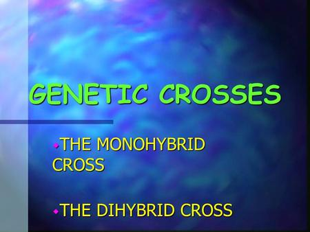 THE MONOHYBRID CROSS THE DIHYBRID CROSS