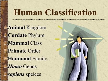 Human Classification Animal Kingdom Cordate Phylum Mammal Class