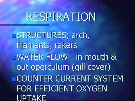 RESPIRATION n STRUCTURES; arch, filaments, rakers n WATER FLOW- in mouth & out operculum (gill cover) n COUNTER CURRENT SYSTEM FOR EFFICIENT OXYGEN UPTAKE.