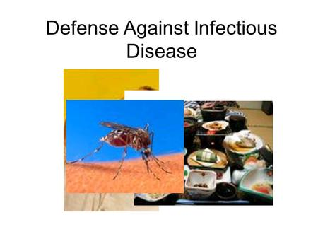 Defense Against Infectious Disease. Review Disease- a disruption of homeostasis Infectious disease- caused by a pathogen Pathogen- disease producing organism.