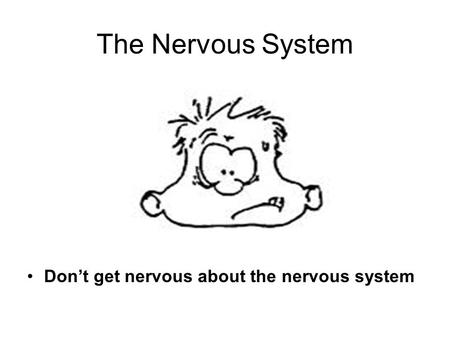 The Nervous System Dont get nervous about the nervous system.