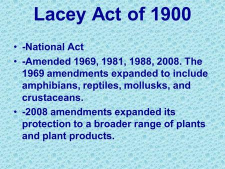 Lacey Act of 1900 -National Act -Amended 1969, 1981, 1988, 2008. The 1969 amendments expanded to include amphibians, reptiles, mollusks, and crustaceans.