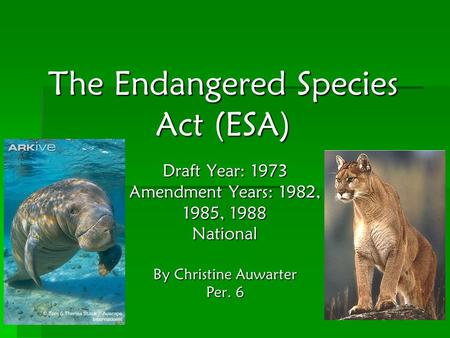 The Endangered Species Act (ESA) Draft Year: 1973 Amendment Years: 1982, 1985, 1988 National By Christine Auwarter Per. 6.