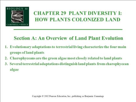 CHAPTER 29 PLANT DIVERSITY I: HOW PLANTS COLONIZED LAND Copyright © 2002 Pearson Education, Inc., publishing as Benjamin Cummings Section A: An Overview.