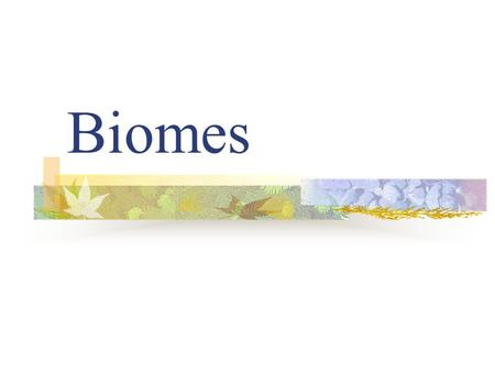 Biomes. A biome is one of Earths large ecosystems, with its own kind of climate, soil, plants, and animals.