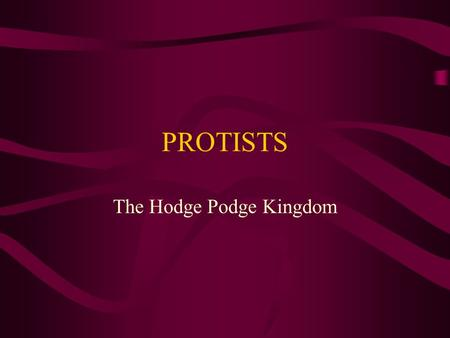 PROTISTS The Hodge Podge Kingdom. Protists are Divided into 3 Catagories The animal-like protists The plant-like protists The fungi-like protists.