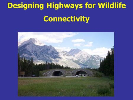 Designing Highways for Wildlife Connectivity. Course Introductions.