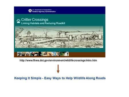Keeping It Simple - Easy Ways to Help Wildlife Along Roads Critter Crossings Linking Habitats and Reducing Roadkill