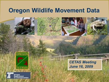 Oregon Wildlife Movement Data CETAS Meeting June 16, 2009.