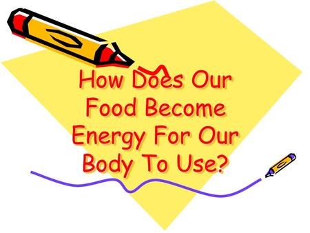 How Does Our Food Become Energy For Our Body To Use?