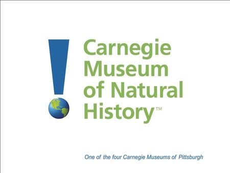 Carnegie Museum of Natural History Established in 1895 by Pittsburgh philanthropist Andrew Carnegie Dinosaur Hall opened in 1907 with one dinosaur Encyclopoedia.