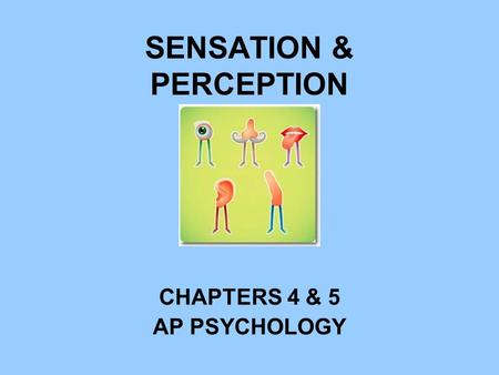 SENSATION & PERCEPTION CHAPTERS 4 & 5 AP PSYCHOLOGY.