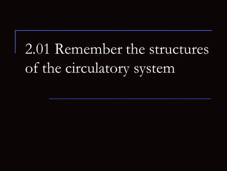 2.01 Remember the structures of the circulatory system.