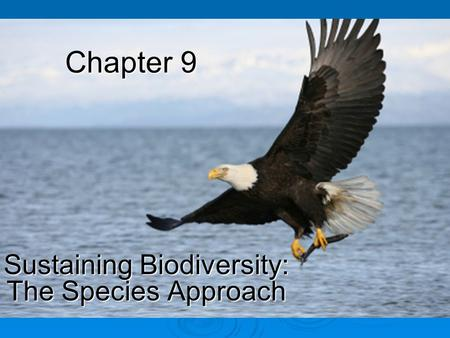 Chapter 9 Sustaining Biodiversity: The Species Approach.