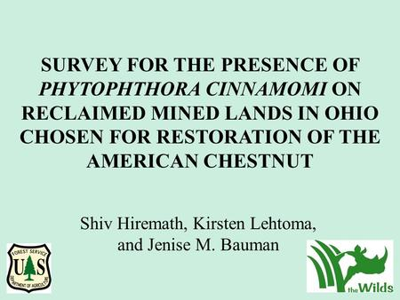SURVEY FOR THE PRESENCE OF PHYTOPHTHORA CINNAMOMI ON RECLAIMED MINED LANDS IN OHIO CHOSEN FOR RESTORATION OF THE AMERICAN CHESTNUT Shiv Hiremath, Kirsten.